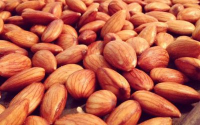 Healthy How-To:  Activating Nuts