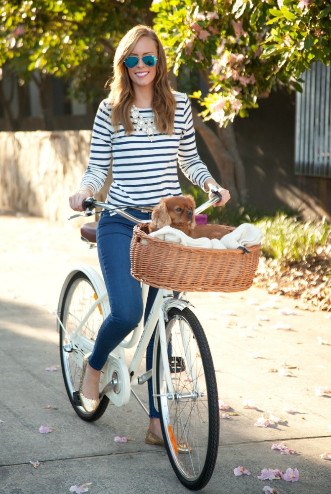 1 J.Crew Stripe top girl on electra bike cavoodle dog in bike basket loeffler randall gold ballet flats blue mirrored ray ban aviator sunglasses style elixir fashion blogger