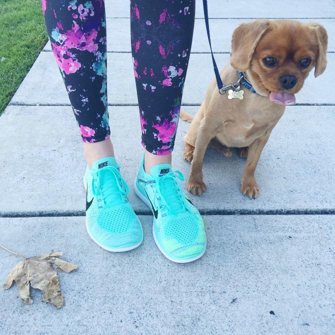 Nike Free Run shoes review aqua turquoise color style elixir fashion blog lauren slade ollie cavoodle dog
