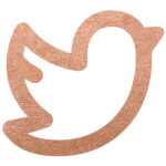 Twitter rose gold icon style elixir blog design