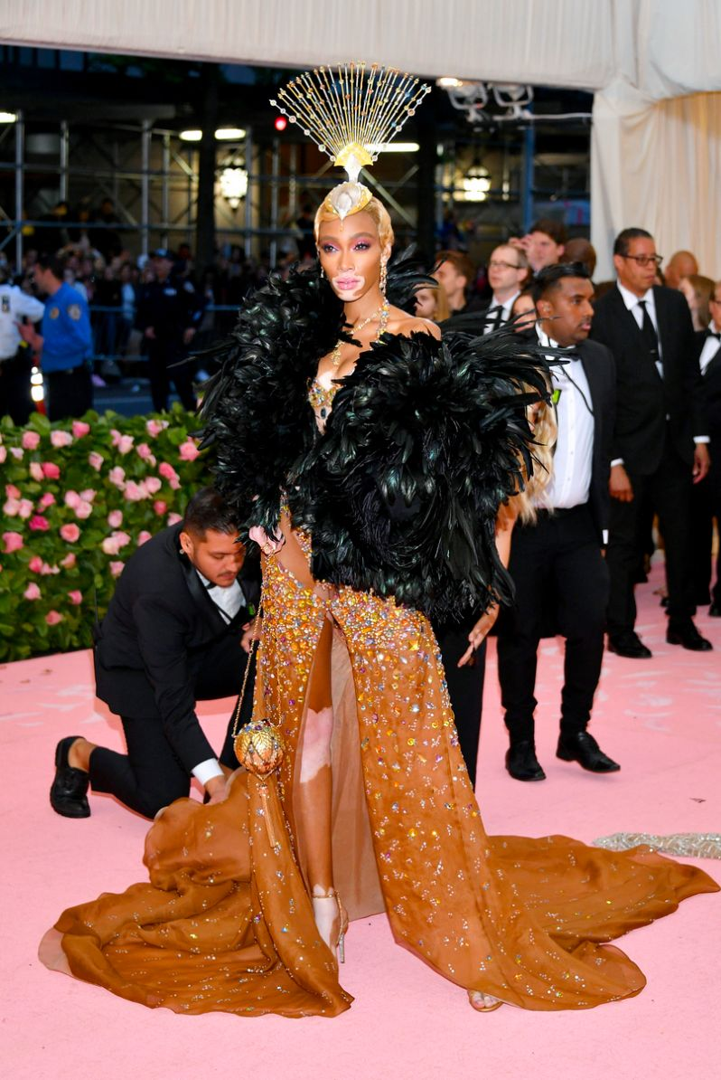 Winnie Harlow met gala 2019 red carpet style