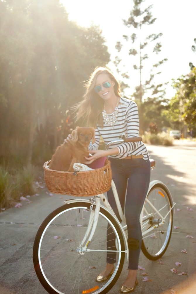 stripe top and jeans outfit pinterest fashion ideas style blogger white bike with dog in basket 10