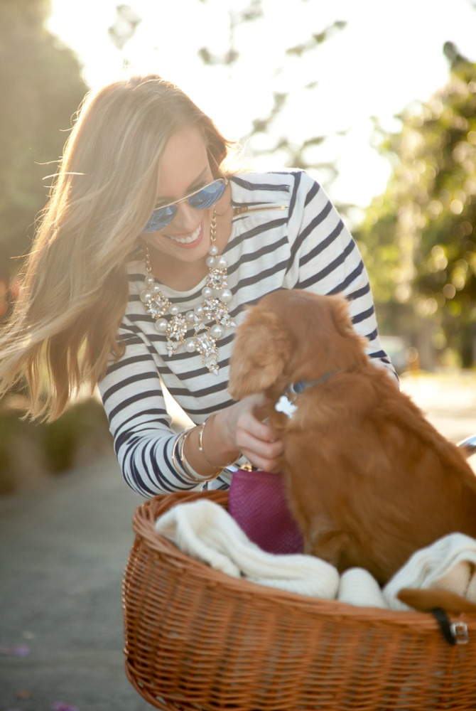 stripe top and jeans outfit pinterest fashion ideas style blogger white bike with dog in basket 4