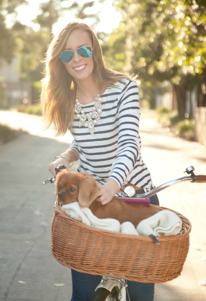 stripe top and jeans outfit pinterest fashion ideas style blogger white bike with dog in basket 9